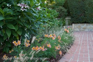 A flower bed with peach and pink flowers designed by Billy Goodnick.