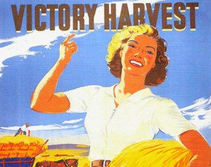Your Harvest Time Food Guide by Seasonal Wisdom victory harvest large uk 001 300x237