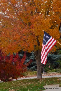 fall garden with pretty tree and American flag