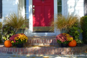 A fall garden on the front steps
