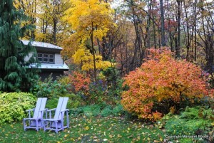The fall garden of Margaret Roach