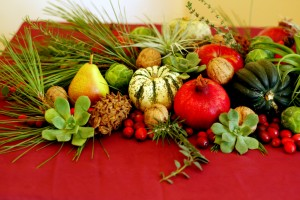 Succulents and air plants in seasonal tablescape