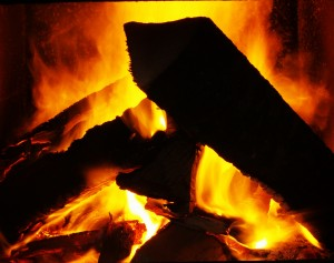 The Firewood Poem tells which woods burn like these logs