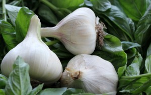 Plants with Benefits include garlic, which increases blood flow to body organs.