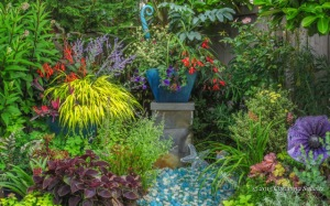 Fine foliage sparkles in this northwestern garden