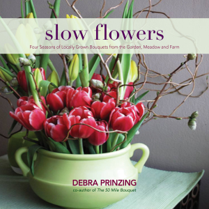 Cover of Slow Flowers
