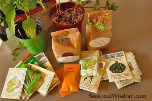 Seeds and worm teas at seed swap
