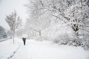 A walk in snow is good for your health