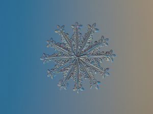 Snowflake - Alexey Kljatov (ChaoticMind75) flickr