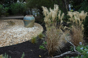Zen garden in the cancer survivor's garden companion