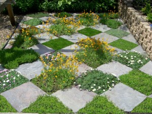 checkerboard garden design
