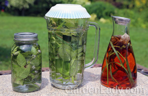 Sun teas for cocktail hour garden parties