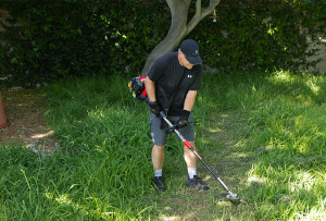 man with troy-bilt brush cutter