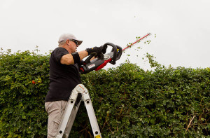 Troy-Bilt Core Hedge Trimmer