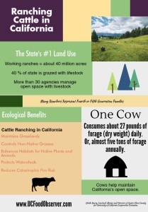 cattle ranching-final