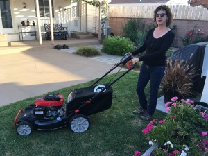 lady and troy bilt lawn mower