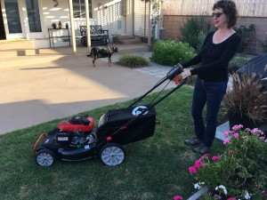 woman with dog and lawn mower
