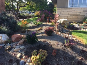 drought tolerant california garden