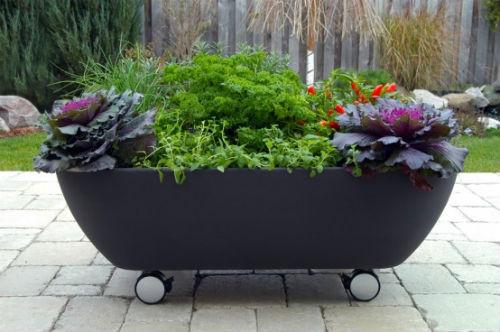 Alfa Img Showing Portable Planters